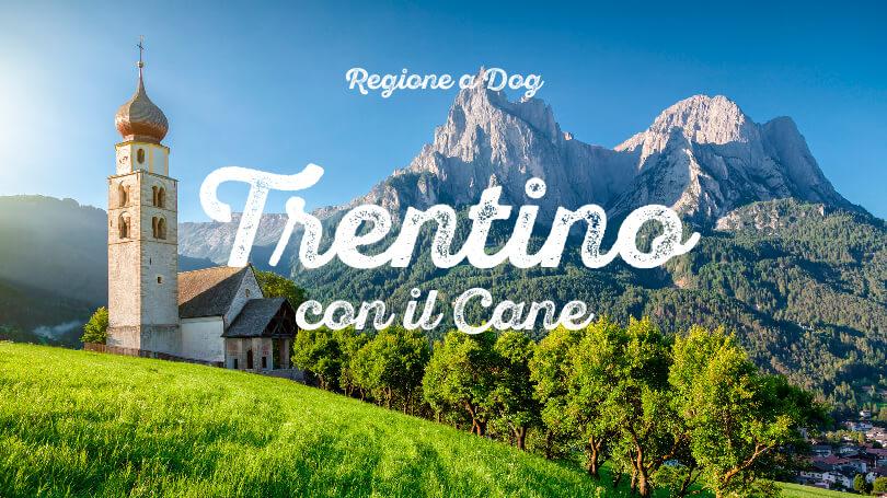 Vacanze in Trentino Alto Adige con il cane