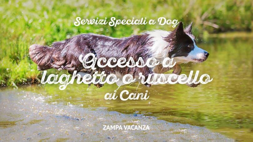 Servizi speciali a dog for Animali laghetto