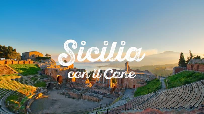 Vacanze In Sicilia Con Il Cane