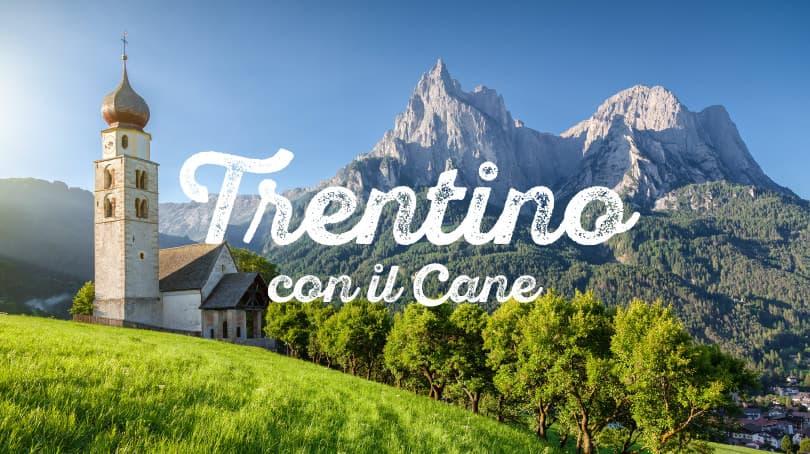 Vacanze con il cane in Montagna | Zampa Vacanza