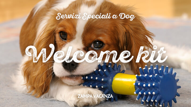 Welcome kit per cani