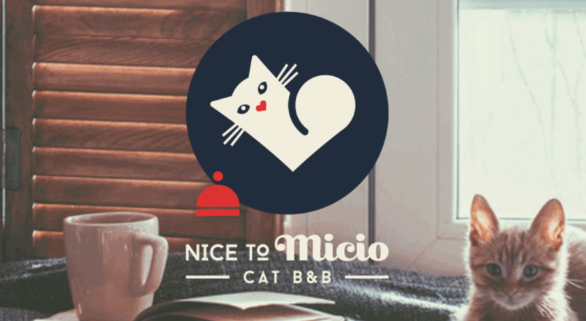 Nice to Micio Cat B&B
