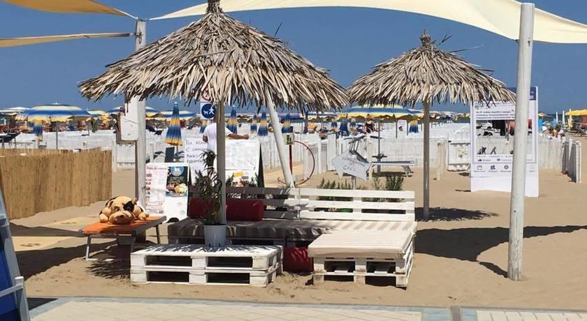 Rimini dog no problem bagno 81 dog beach in emilia romagna