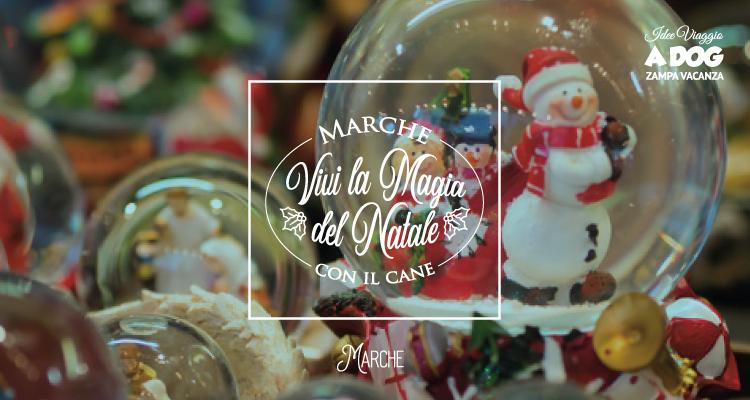 Babbo Natale Zampa.Marche Vivi La Magia Del Natale Con Il Cane Zampa Vacanza